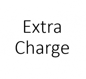 Extraordinary Charge